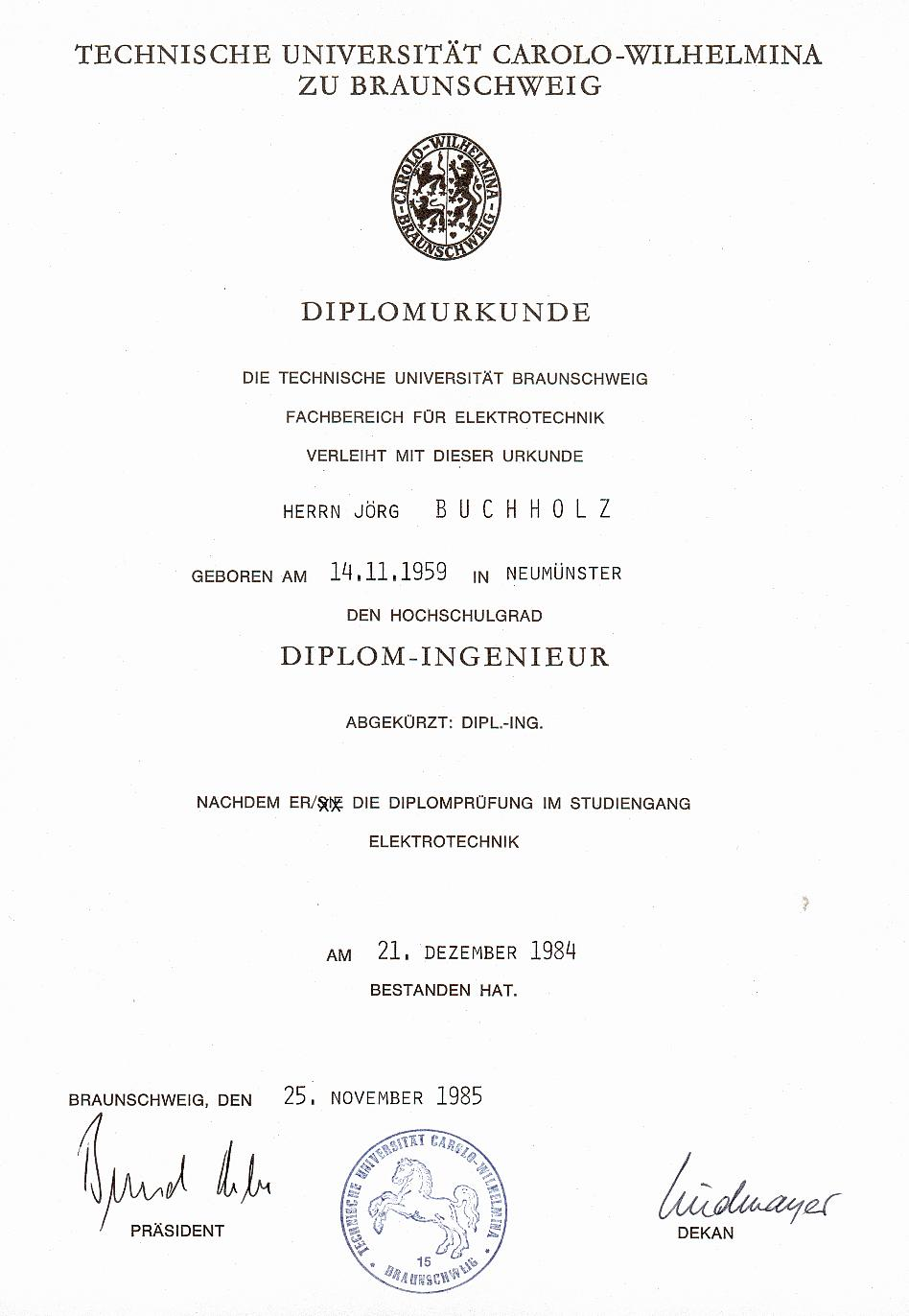 Ingo bojak phd thesis